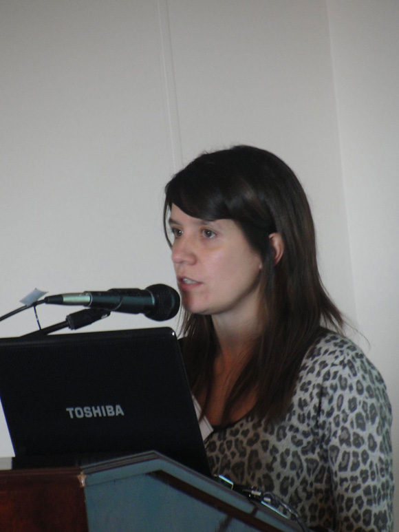 20113