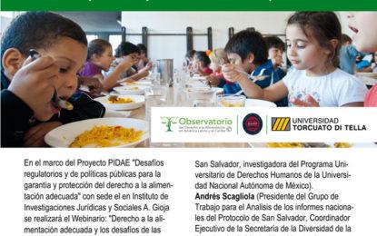 webinario «Derecho a la alimentación adecuada y los desafíos de las políticas públicas durante a la pandemia